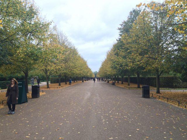 Regents Park, London. Location of Frieze London and Frieze Masters 2015