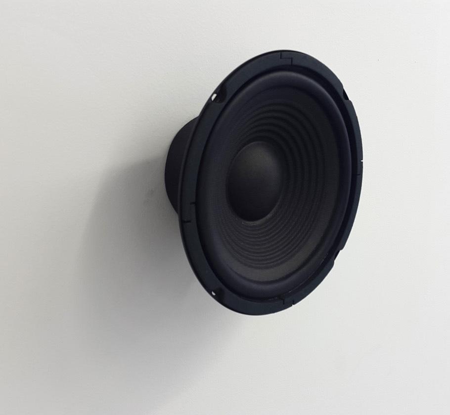 James Webb, All that is unknown (detail), 2016. Two speakers and audio. Each speaker diameter: 21cm; Duration: Infinite