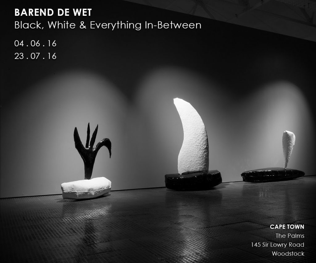 Barend De Wet: Black, White and Everything In-Between