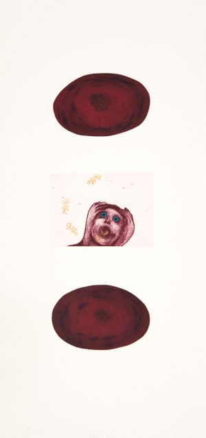 Penny Siopis, Shame Pools, 2004. A three plate, colour etching with collaged found plastic objects on 300 gsm BFK Rives paper, 87 x 39.5 cm