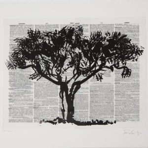 William Kentridge, Black Monkey Thorn. A chine-collé silhouetted image on de-acidified book pages. Black Monkey Thorn forms part of his analysis of the forms of different trees indigenous to South Africa. Each impression in the edition has a different book page, 27 x 32 cm
