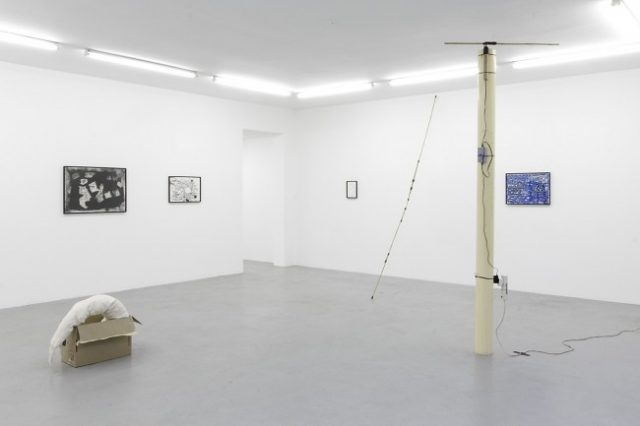 Jared Ginsburg 'The Natural World parts 2, 3, 4, 5 and 6' 2015. Installation view: blank projects