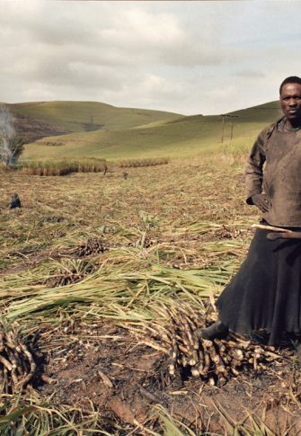 Zwelethu Mthethwa (from the Sugar Cane series), 2007. Chromogenic print