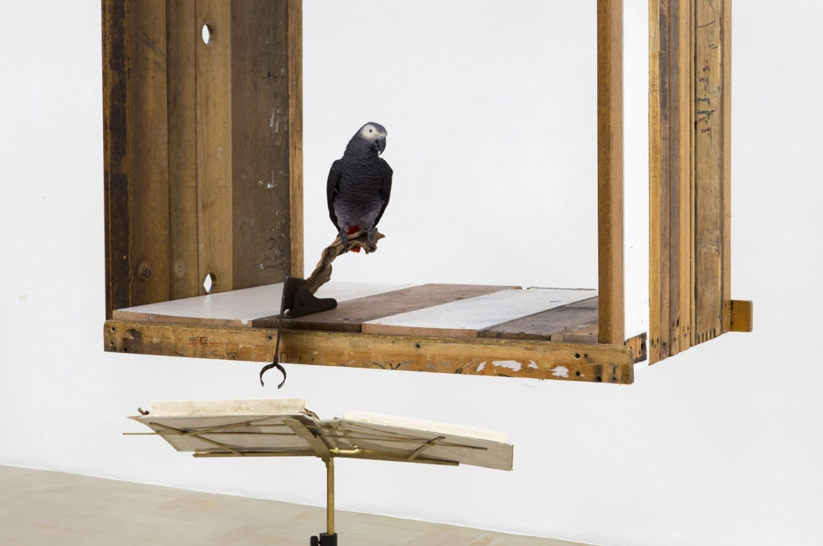 Kemang Wa Lehulere, One is too many, a thousand will never be enough (detail), 2016. Salvaged school desks, music stand, found object, taxidermied African grey parrot, sound installation. Dimensions variable