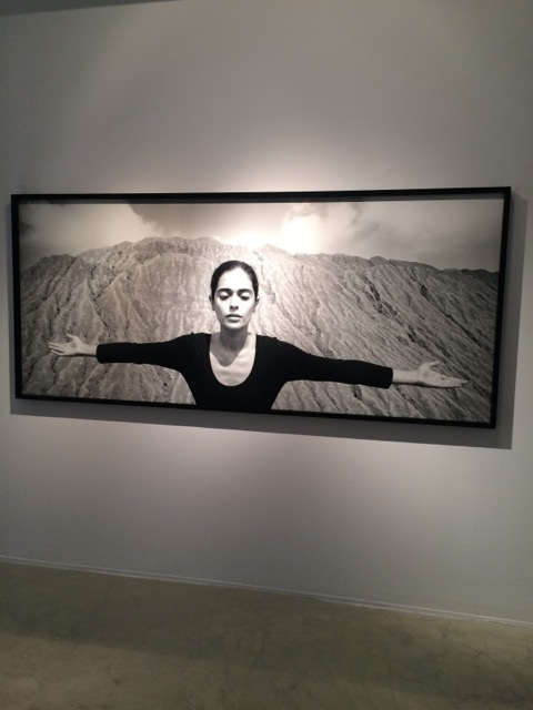 Shirin Neshat at Goodman