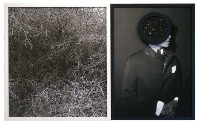 Todd Gray, Flora Africanus (Shadow), 2017. 2 archival pigment prints in found artist's frames 106.5 x 66 cm